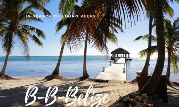 B-B-B Belize